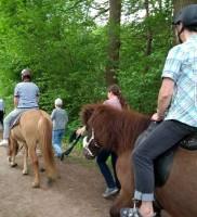 Acht Frauen aus dem Norden das erste Mal in ihrem Leben auf einem Pferd. Schön war´s.